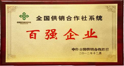 """In  2012  银山股份总公司跻身全国供销系统""""百强企业""""。"""