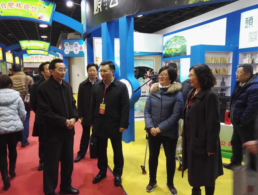 合肥市副市长江洪同志到我公司展台视察